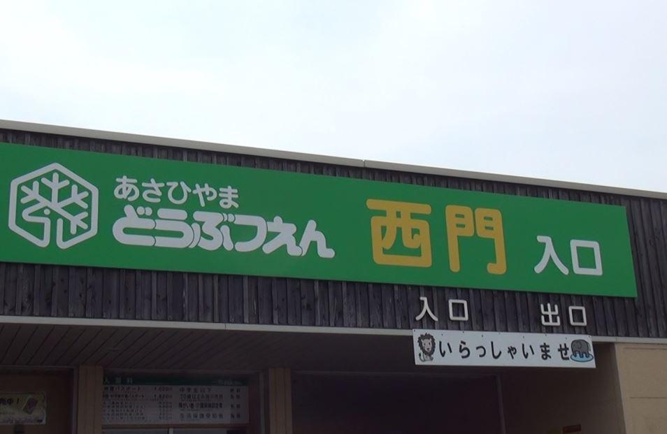 北海道 春の旭山動物園