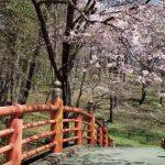 北海道 桜スポット 新得山町立自然公園